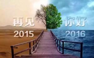 密码保护:回顾2015,展望2016!